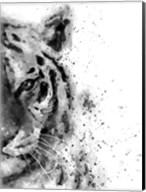Tiger At Attention Fine-Art Print