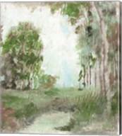 Land Amongst the Woods Fine-Art Print
