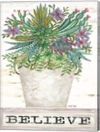 Believe Succulents Fine-Art Print