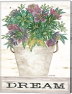 Dream Succulents Fine-Art Print