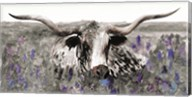 Longhorn in Flower Field Fine-Art Print