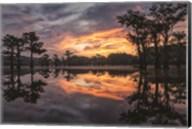 Sunrise in the Swamps Fine-Art Print