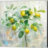 Lemon Branch Fine-Art Print