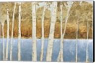 Lakeside Birches Fine-Art Print