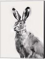Wild Hare I Fine-Art Print