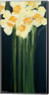 Daffodils Fine-Art Print