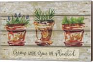Grow Where Fine-Art Print