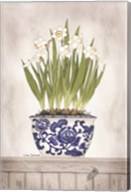 Blue and White Daffodils II Fine-Art Print