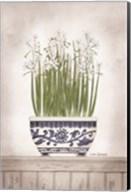 Blue and White Paperwhites II Fine-Art Print