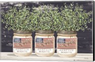 Patriotic Glass Jar Trio II Fine-Art Print