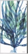 Soft Seagrass in Blue 1 Fine-Art Print