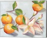Tangerine Blossoms I Fine-Art Print