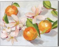 Tangerine Blossoms II Fine-Art Print