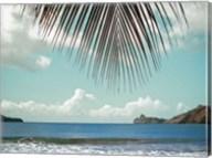 Palm Seashore Fine-Art Print