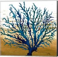 Coastal Blue II Fine-Art Print