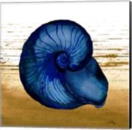 Coastal Blue IV Fine-Art Print