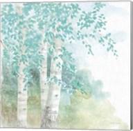 Natures Leaves II No Gold Fine-Art Print