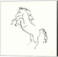 Line Horse IX Fine-Art Print