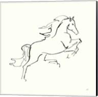Line Horse VI Fine-Art Print