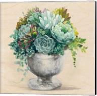 Festive Succulents I Fine-Art Print