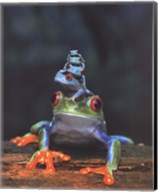 Frogs photo Fine-Art Print