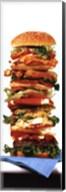 Hamburger Fine-Art Print