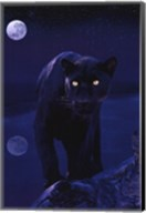 Black Panther In Moonlight Wall Poster
