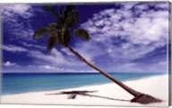 Tropical Leaning Palm Tree Fine-Art Print