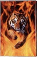Bengal Tiger Jumping Flames Wall Poster