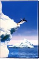 Penguin Flight Wall Poster