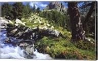Mountain Creek Wall Poster