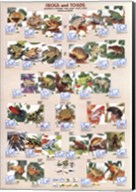 Frogs and Toads Fine-Art Print