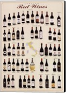 Italian Red Wines Wall Poster
