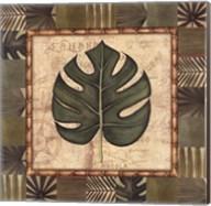 Tropical Leaf IV Fine-Art Print