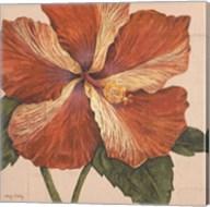 Island Hibiscus I Fine-Art Print