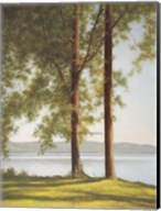 Sunlit Trees II Fine-Art Print