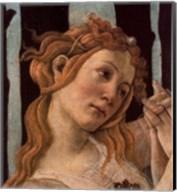 Detail: La Primavera Fine-Art Print