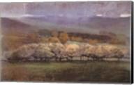 Misty View Fine-Art Print