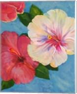 Hibiscus Fantasia Fine-Art Print