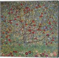 The Apple Tree Fine-Art Print