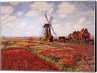 Champ de Tulipes Fine-Art Print
