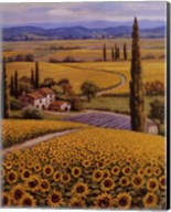 Sunflower Field Fine-Art Print