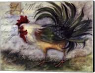 Le Rooster IV Fine-Art Print
