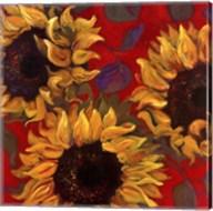 Sunflower I Fine-Art Print