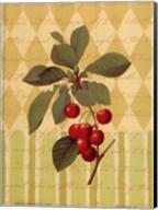 Botanical Cherries Fine-Art Print