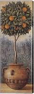 Orange Topiary Fine-Art Print