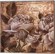 Antique Rose I Fine-Art Print