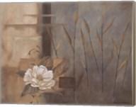 Teal Peony Fine-Art Print