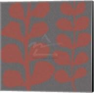 Maidenhair Coral Stem (double) Fine-Art Print