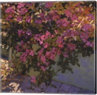 Steps and Summer Flowers Fine-Art Print